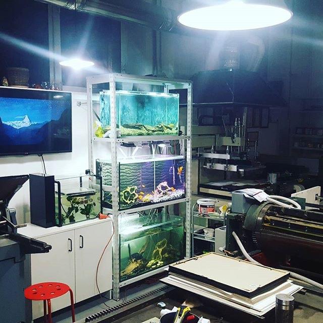 Немного усилили систему увлажнения воздуха в мастерской. Air wetting system gets a little upgrade in the shop. :)) #suvorovpress #shoplife #letterpressshop #aquaria